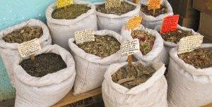 Las-plantas-medicinales