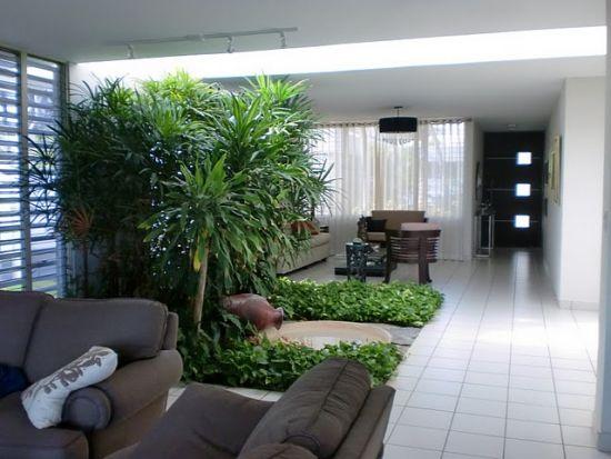 Jardines hidrop nicos paisajismo con beneficios for Jardines interiores pequenos minimalistas