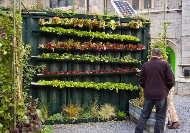 Hidropon a una excelente alternativa para la agricultura - Huerto en la terraza ...