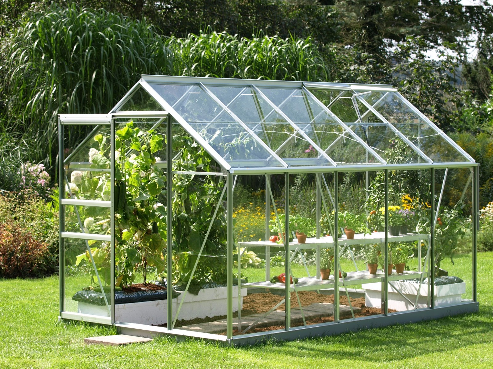 Agricultura protegida en m xico - Invernadero de cristal ...