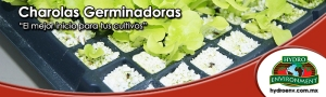 charolas_germinadoras_banner