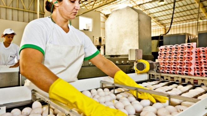 Regulaci n de alimentos en m xico for Procesos de produccion de alimentos