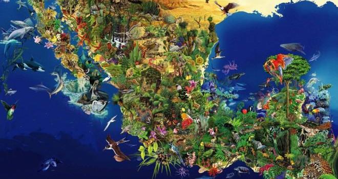 Resultado de imagen para biodiversidad en mexico